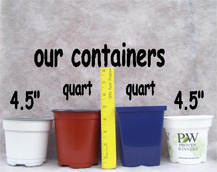 Our Containers